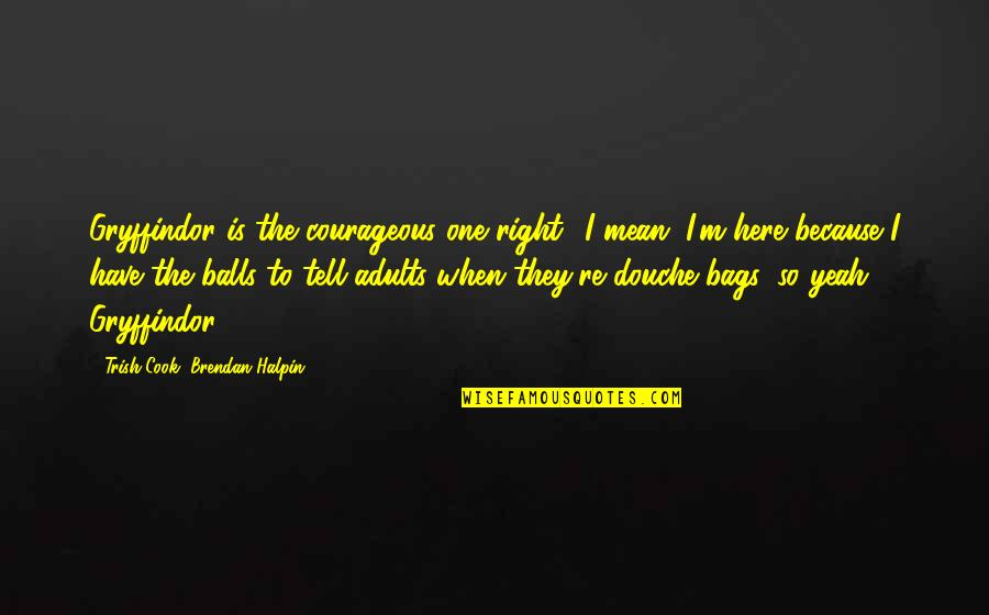 Yeah Quotes By Trish Cook, Brendan Halpin: Gryffindor is the courageous one right? I mean,