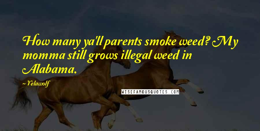 Yelawolf quotes: How many ya'll parents smoke weed? My momma still grows illegal weed in Alabama.