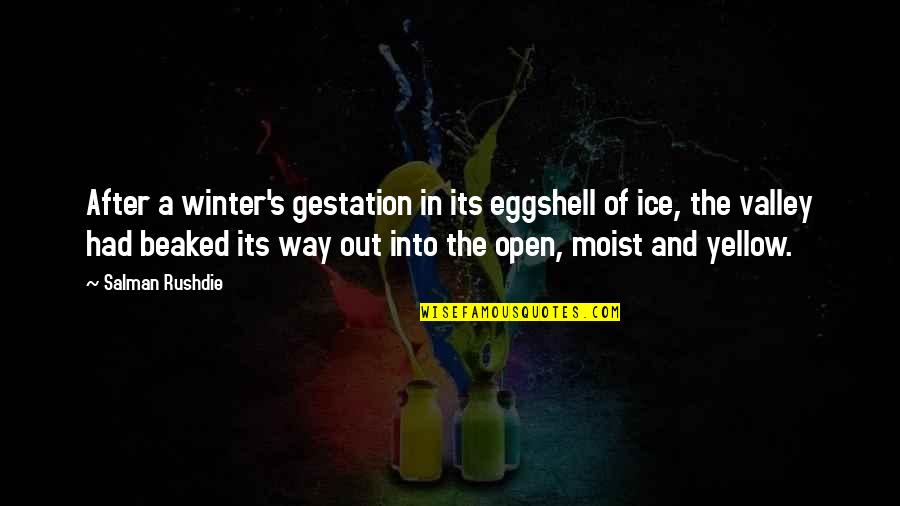 Yellow Quotes By Salman Rushdie: After a winter's gestation in its eggshell of