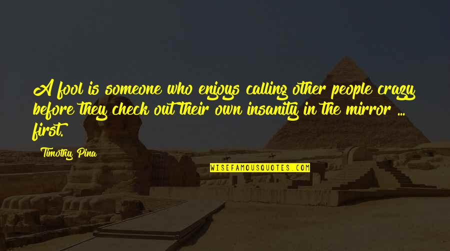 Yes I'm Crazy Quotes By Timothy Pina: A fool is someone who enjoys calling other