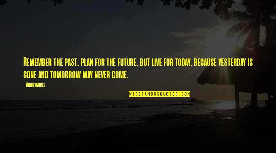 Yesterday And Today Quotes By Anonymous: Remember the past, plan for the future, but