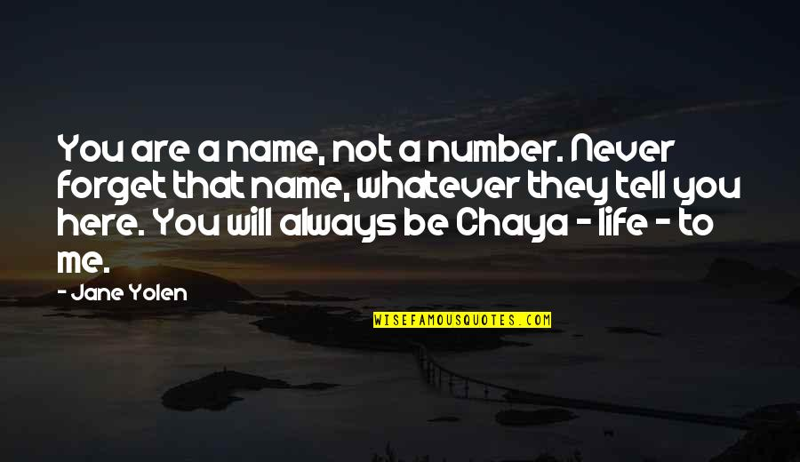 You Always Forget Me Quotes By Jane Yolen: You are a name, not a number. Never