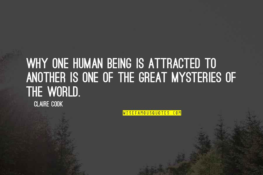 You Are A Great Human Being Quotes By Claire Cook: Why one human being is attracted to another
