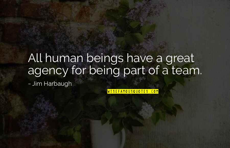 You Are A Great Human Being Quotes By Jim Harbaugh: All human beings have a great agency for