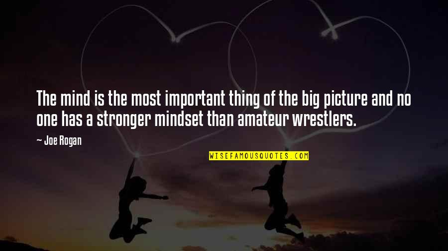 You Are Important Picture Quotes By Joe Rogan: The mind is the most important thing of