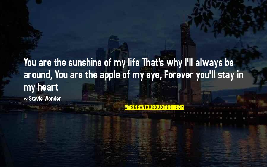 You Are In My Heart Quotes By Stevie Wonder: You are the sunshine of my life That's