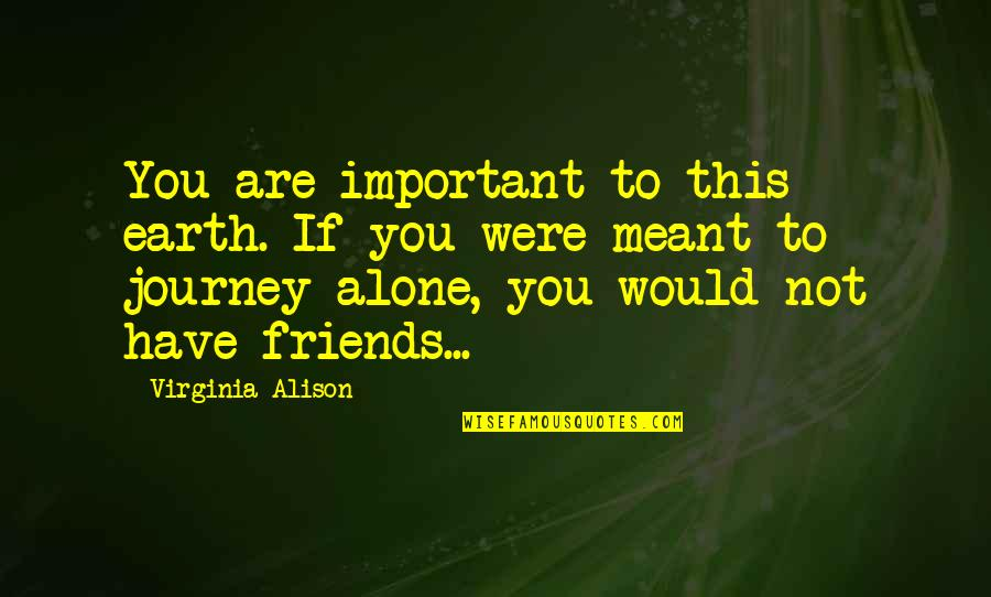 You Are Not Alone Love Quotes By Virginia Alison: You are important to this earth. If you