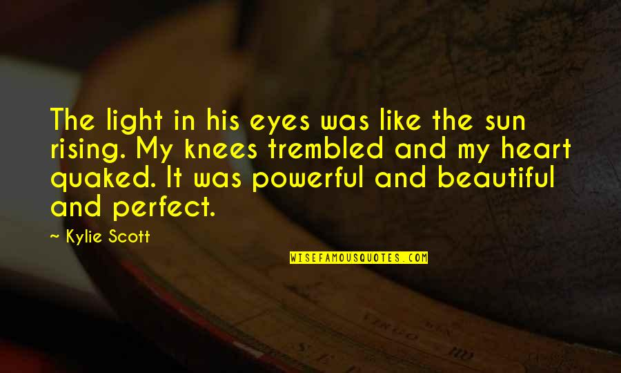 You Are Perfect In My Eyes Quotes By Kylie Scott: The light in his eyes was like the