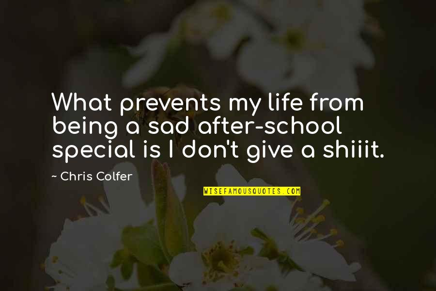 You Are Special In My Life Quotes By Chris Colfer: What prevents my life from being a sad