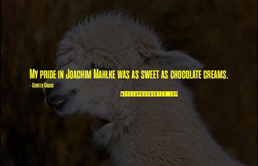 You Are Sweet As Quotes By Gunter Grass: My pride in Joachim Mahlke was as sweet
