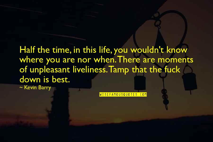 You Are The Best You Quotes By Kevin Barry: Half the time, in this life, you wouldn't
