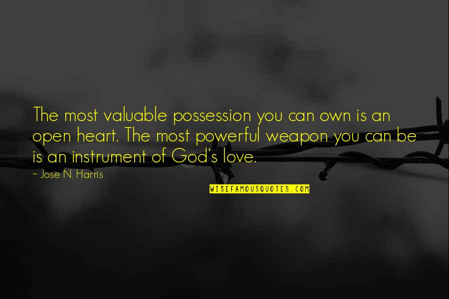 You Are Valuable To God Quotes By Jose N. Harris: The most valuable possession you can own is