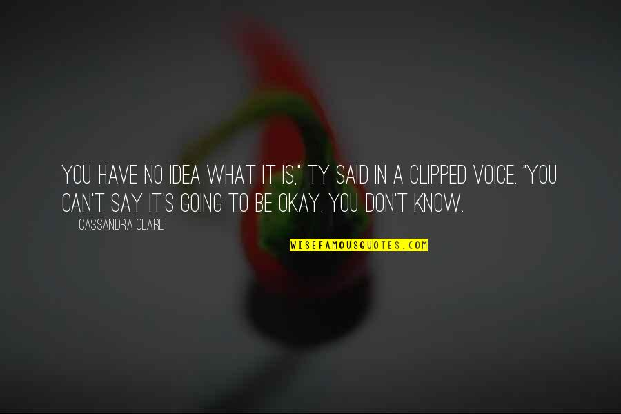 "You Be Okay Quotes By Cassandra Clare: You have no idea what it is,"" Ty"
