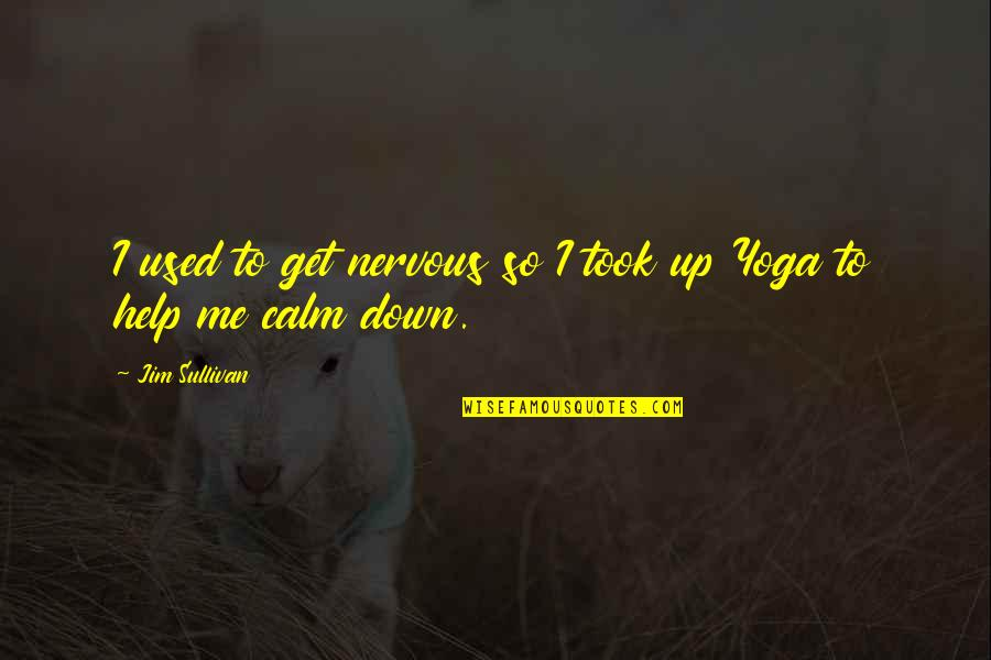 You Calm Me Down Quotes By Jim Sullivan: I used to get nervous so I took