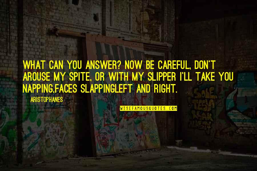 You Can't Take It Back Quotes By Aristophanes: What can you answer? Now be careful, don't