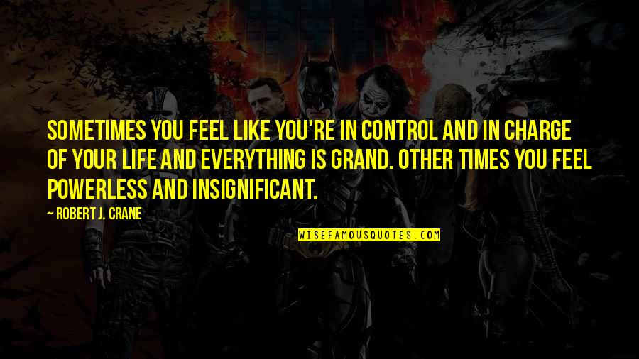 You Control Your Own Life Quotes By Robert J. Crane: Sometimes you feel like you're in control and