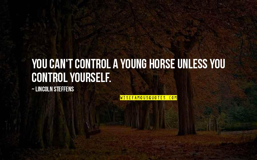 You Control Yourself Quotes By Lincoln Steffens: You can't control a young horse unless you