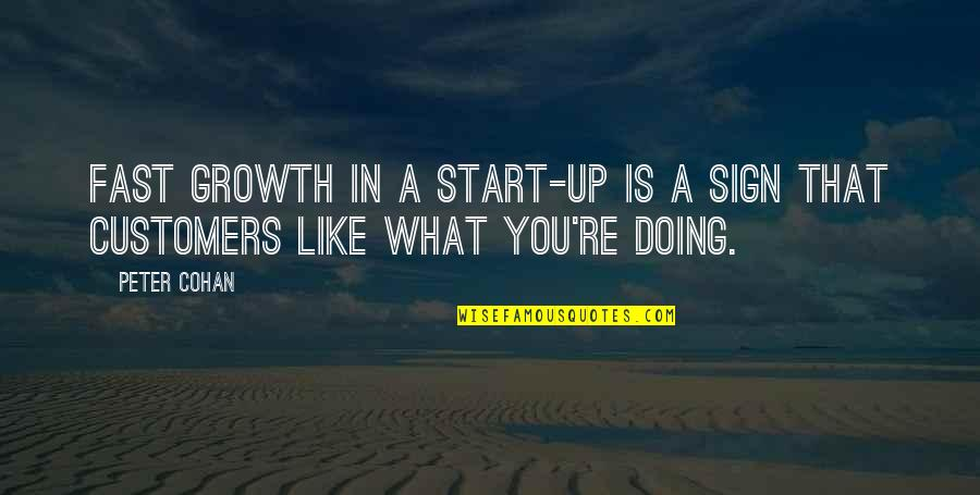 You Doing You Quotes By Peter Cohan: Fast growth in a start-up is a sign