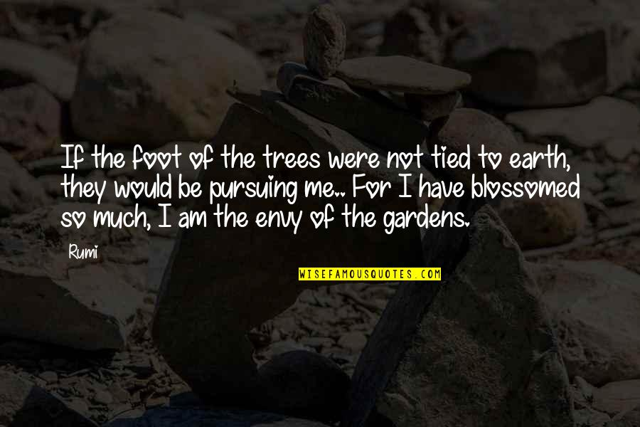 You Envy Me Quotes By Rumi: If the foot of the trees were not