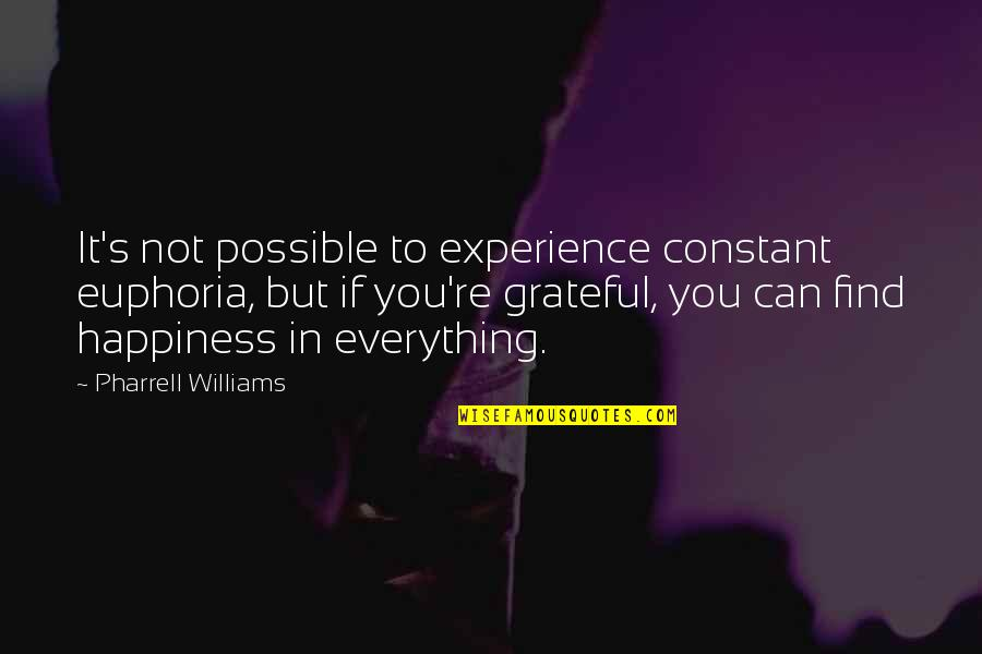 You Find Happiness Quotes By Pharrell Williams: It's not possible to experience constant euphoria, but