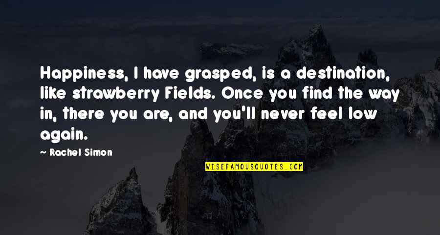 You Find Happiness Quotes By Rachel Simon: Happiness, I have grasped, is a destination, like