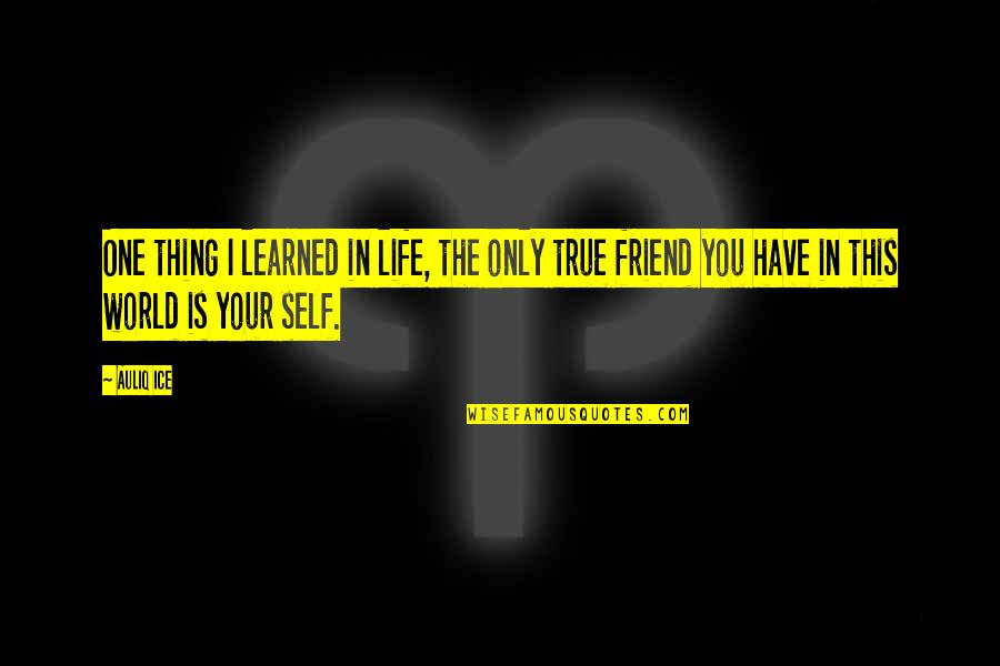 You Friend Quotes By Auliq Ice: One thing I learned in life, the only