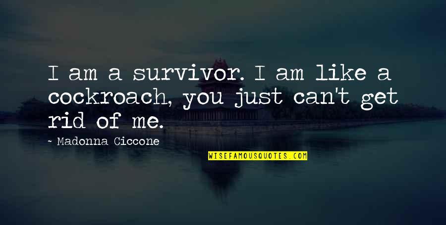 You Get Me Quotes By Madonna Ciccone: I am a survivor. I am like a