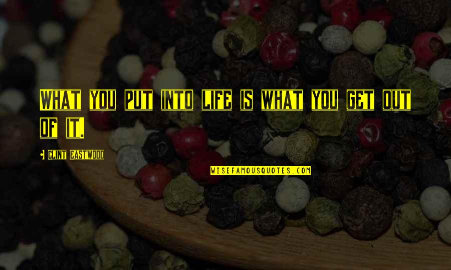 You Get What You Put Into Life Quotes By Clint Eastwood: What you put into life is what you