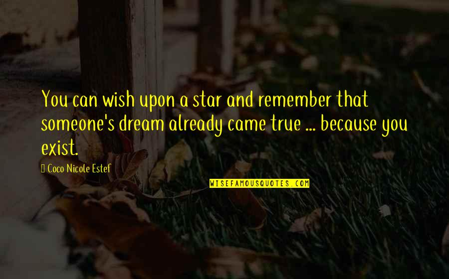 You Had Something Good Quotes By Coco Nicole Estef: You can wish upon a star and remember
