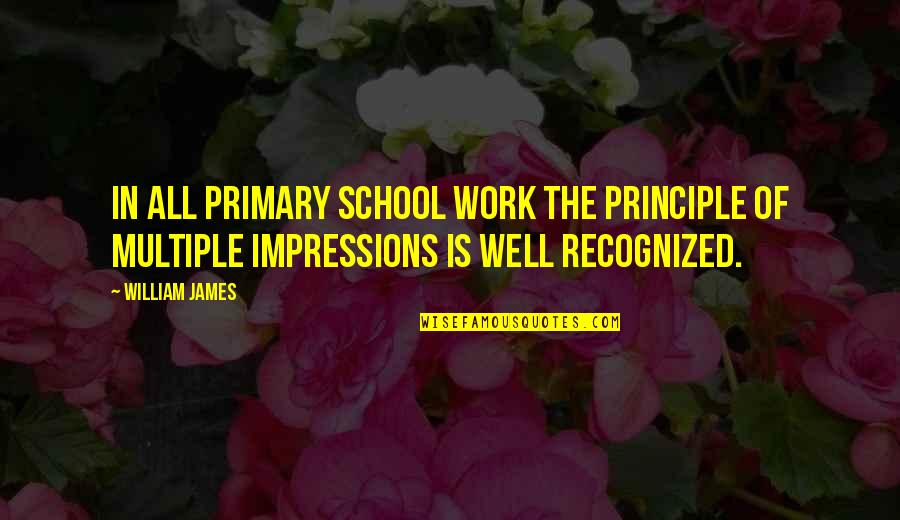 You Had Something Good Quotes By William James: In all primary school work the principle of