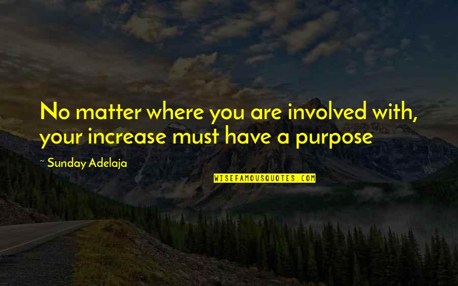 You Have A Purpose Quotes By Sunday Adelaja: No matter where you are involved with, your