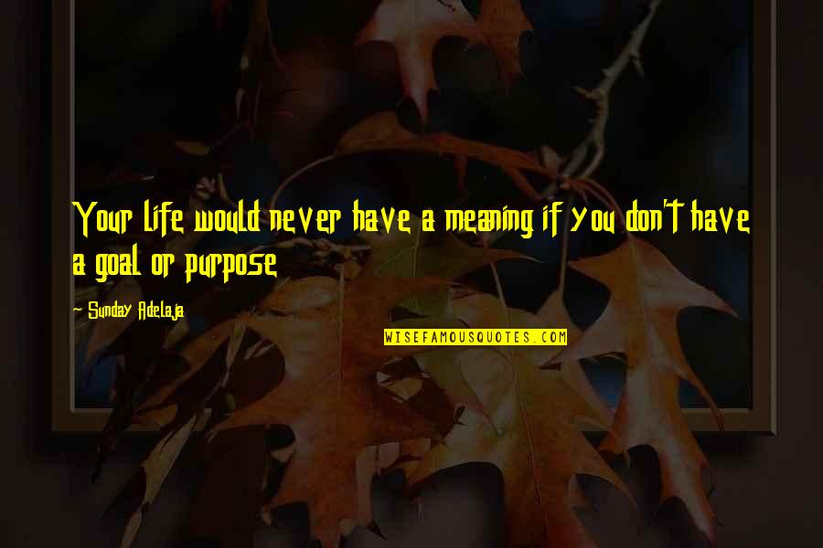 You Have A Purpose Quotes By Sunday Adelaja: Your life would never have a meaning if