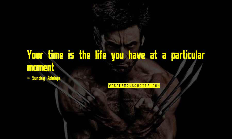 You Have A Purpose Quotes By Sunday Adelaja: Your time is the life you have at