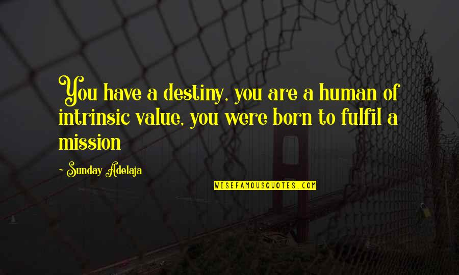 You Have A Purpose Quotes By Sunday Adelaja: You have a destiny, you are a human