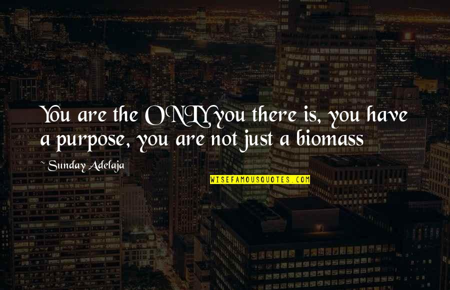 You Have A Purpose Quotes By Sunday Adelaja: You are the ONLY you there is, you