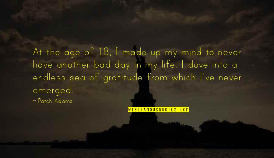 You Have Just Made My Day Quotes By Patch Adams: At the age of 18, I made up