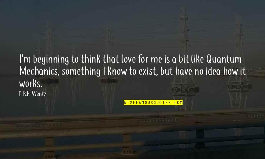 You Have No Idea Love Quotes By R.E. Wentz: I'm beginning to think that love for me