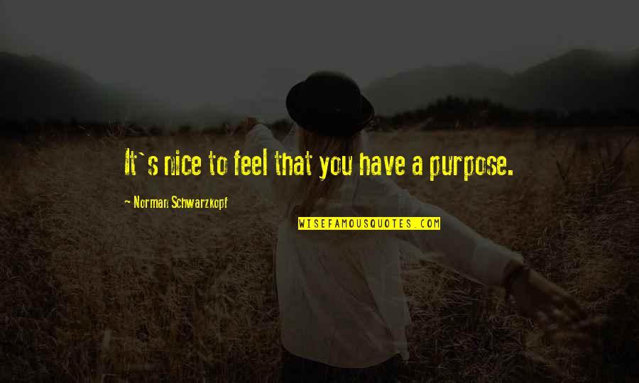 You Have Purpose Quotes By Norman Schwarzkopf: It's nice to feel that you have a