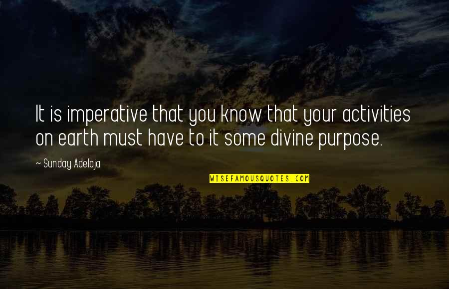 You Have Purpose Quotes By Sunday Adelaja: It is imperative that you know that your