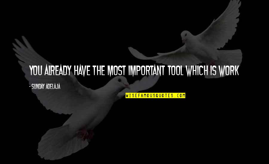 You Have Purpose Quotes By Sunday Adelaja: You already have the most important tool which