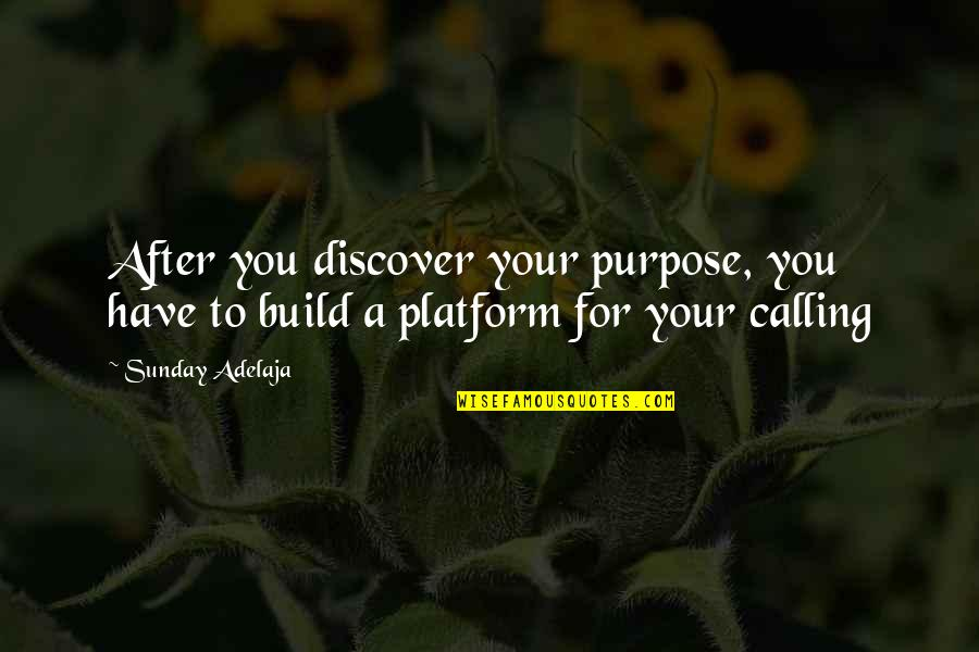 You Have Purpose Quotes By Sunday Adelaja: After you discover your purpose, you have to