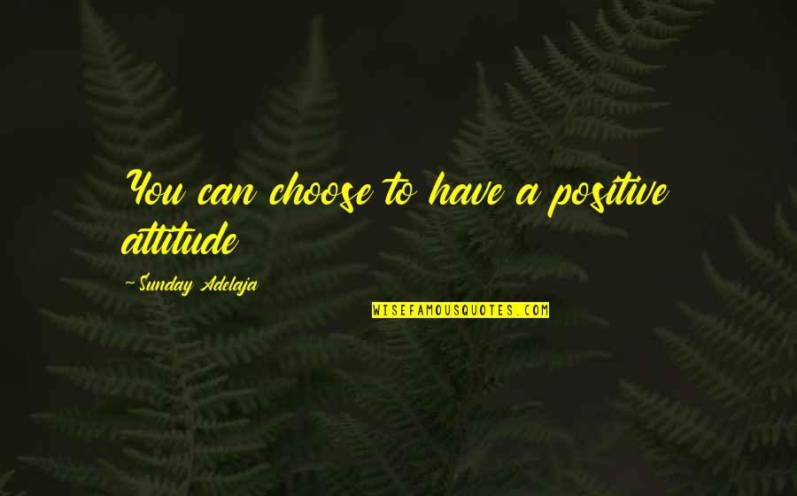 You Have Purpose Quotes By Sunday Adelaja: You can choose to have a positive attitude