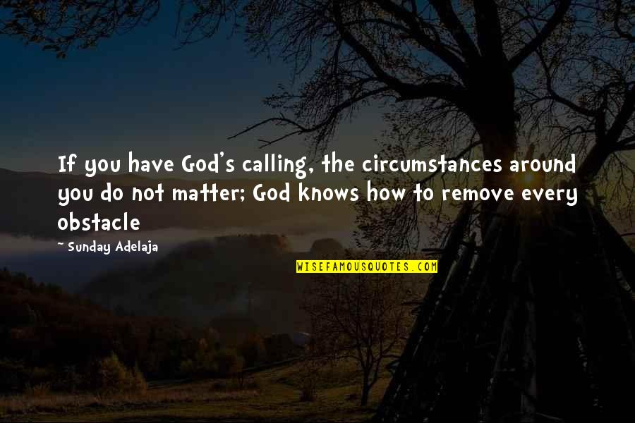 You Have Purpose Quotes By Sunday Adelaja: If you have God's calling, the circumstances around