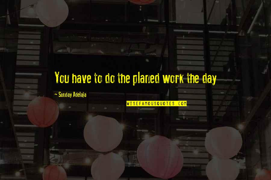 You Have Purpose Quotes By Sunday Adelaja: You have to do the planed work the