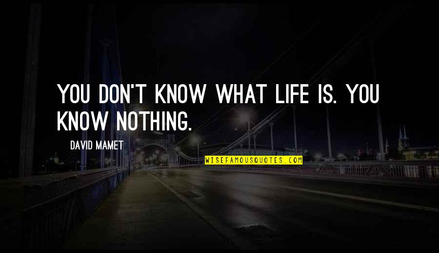 You Know Nothing Quotes By David Mamet: You don't know what life is. You know