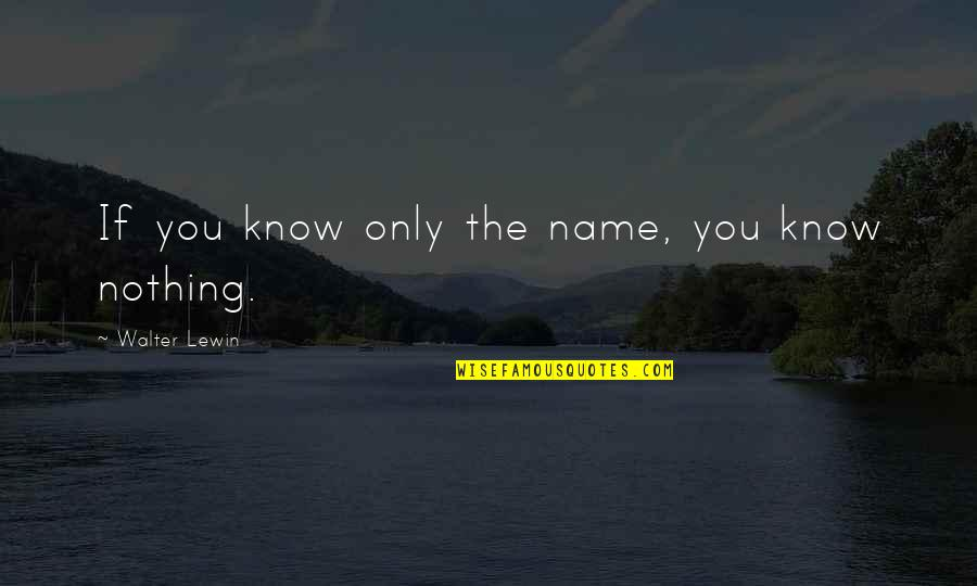 You Know Nothing Quotes By Walter Lewin: If you know only the name, you know