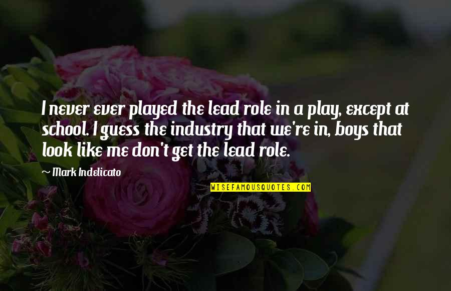 You Lead Me On Quotes By Mark Indelicato: I never ever played the lead role in