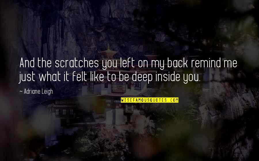 You Left Me Quotes By Adriane Leigh: And the scratches you left on my back