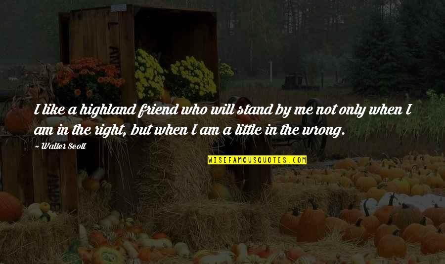 You Like Me For Who I Am Quotes By Walter Scott: I like a highland friend who will stand