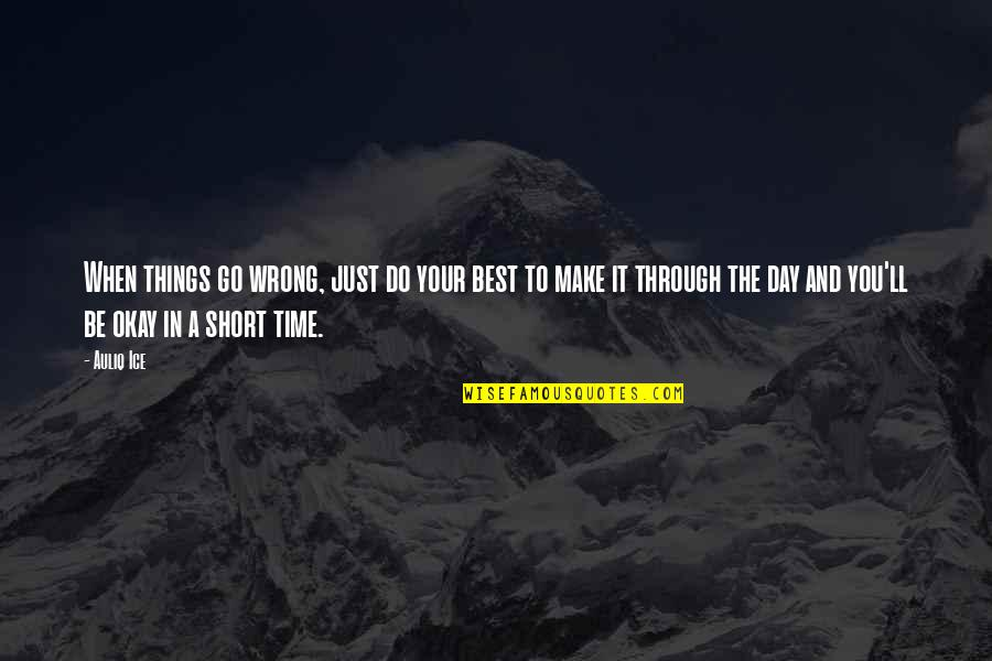 You Ll Be Okay Quotes By Auliq Ice: When things go wrong, just do your best
